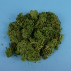 GM164 Lichen, Light Green, Large Pack to make trees & bushes. Size: OO -0