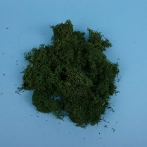 GM165 Lichen Dark Green Large Pack -0