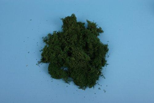 GM165 Lichen Dark Green Large Pack -0